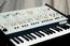 ARP Odyssey One of the great classic synths